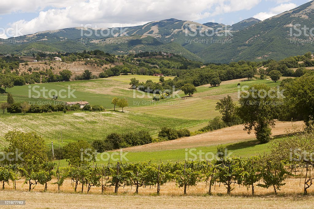 Landscape between Lazio and Umbria (Italy) at summer stock photo