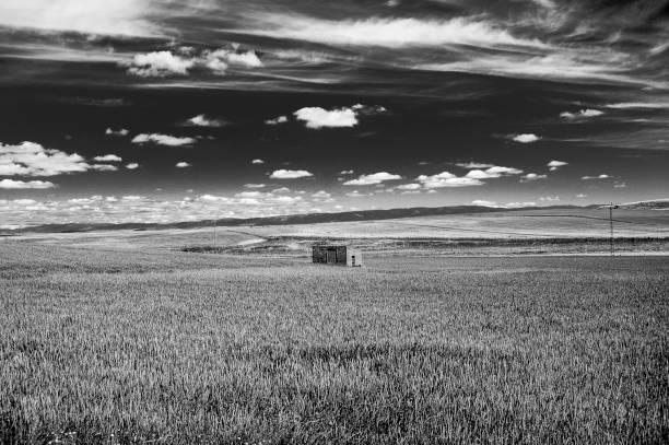 paisaje negro y blanco, espacio rural - monse del campo fotografías e imágenes de stock