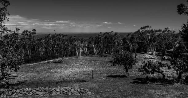 Landscape, Blue Mountains stock photo