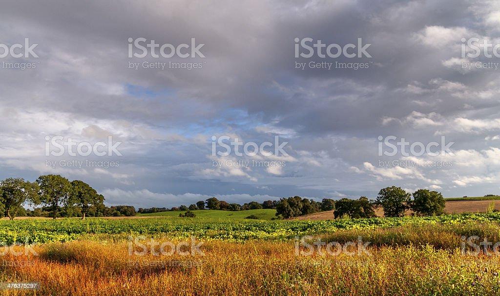 Landscape cheshire England stock photo