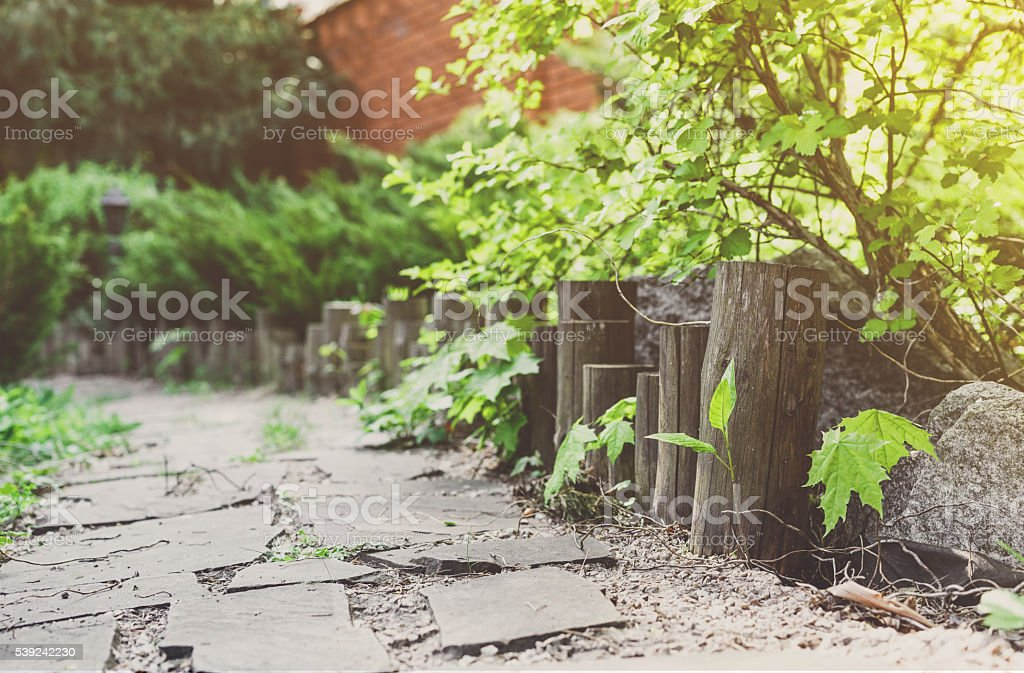 Landscape design, evergreen bushes and path royalty-free stock photo