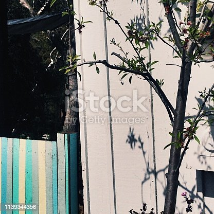601026242 istock photo Landscape design with blue, yellow and grey wood fence 1139344356