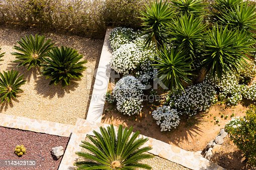 Landscape design with palm trees and flowers. Top view of the modern garden design with a terrace