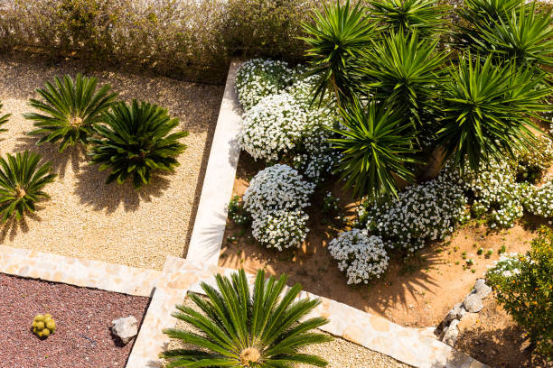 Landscape design with palm trees and flowers. Top view of the modern garden design with a terrace. Landscape design with palm trees and flowers. Top view of the modern garden design with a terrace landscaped stock pictures, royalty-free photos & images