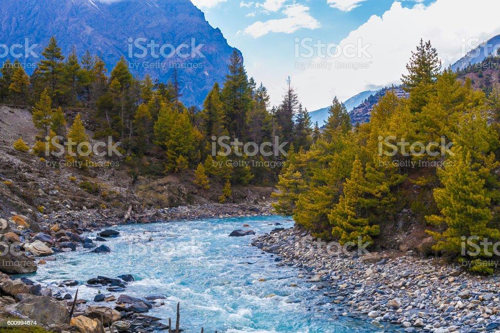 Landscape Fast Mountains River Hiking Himalayas.Beautiful View Waterfalls Asia стоковое фото