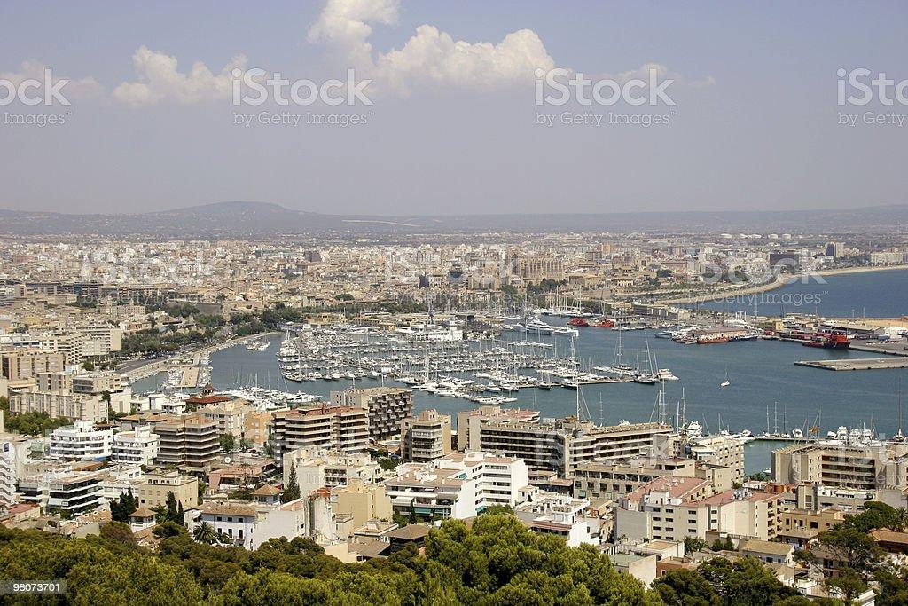 Paesaggio di Palma foto stock royalty-free