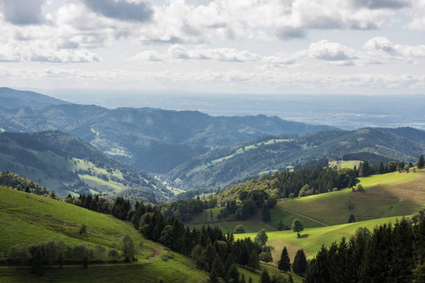 landscape germany black forest germany near Freiburg im Breisgau black forest stock pictures, royalty-free photos & images