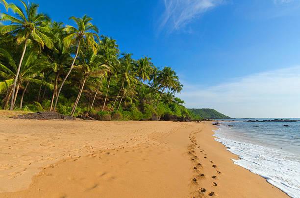 landscape goa beautiful landscape beach in Goa in Indiabeautiful landscape beach in Goa in India goa stock pictures, royalty-free photos & images