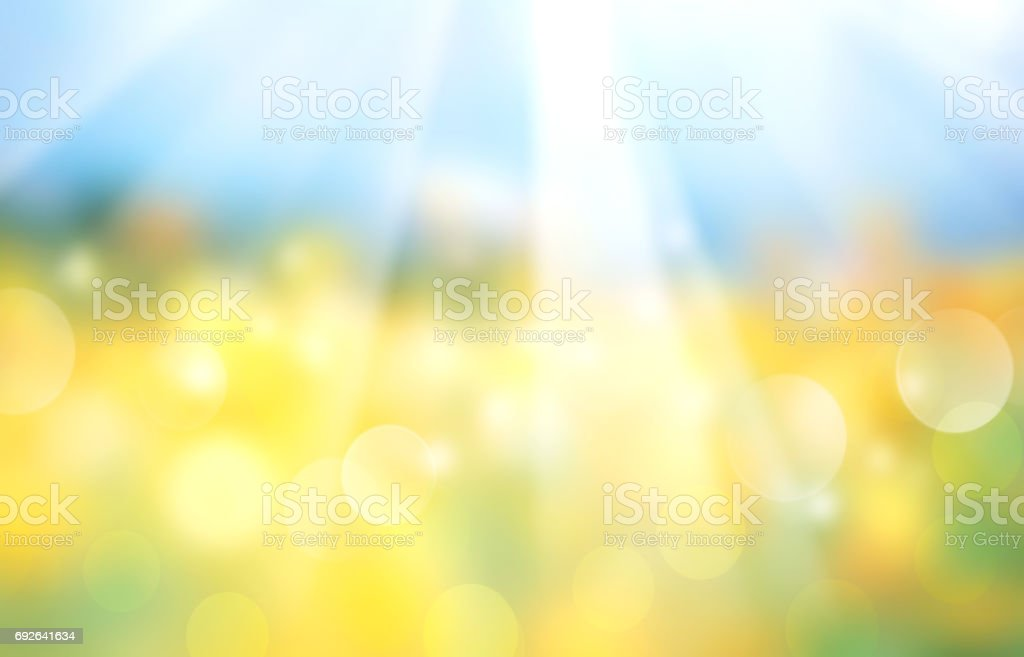 Landscape horizontal blurred field banner. - foto stock
