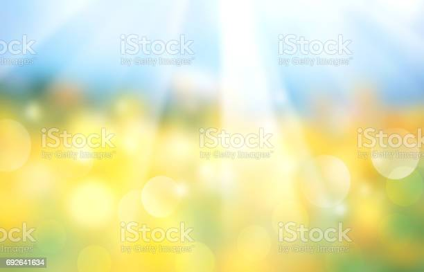 Photo of Landscape horizontal blurred field banner.