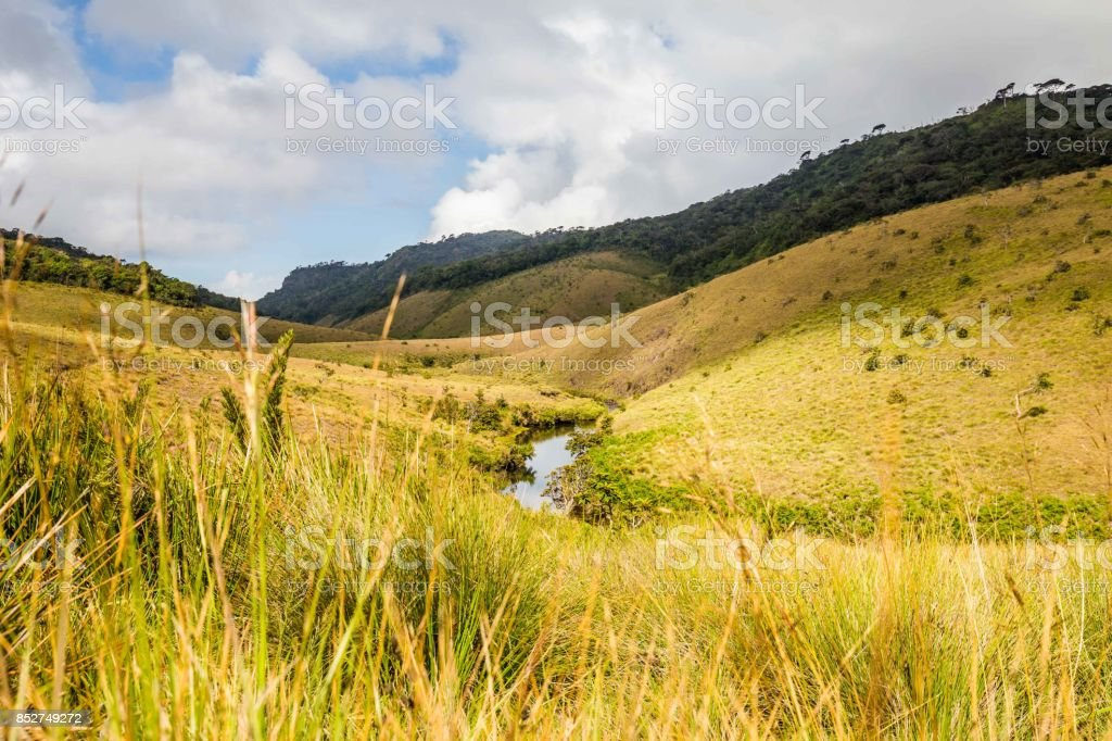 Landschap Horton Plains National Park in Sri Lanka foto