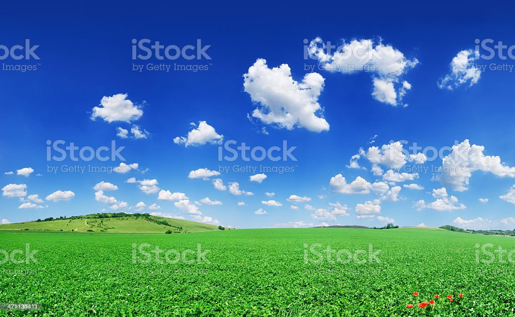 Landscape - Idyll, green field blue sky and white sky royalty-free stock photo