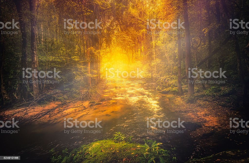 Landscape image beautiful little waterfall in woods of Sudety mountains stock photo