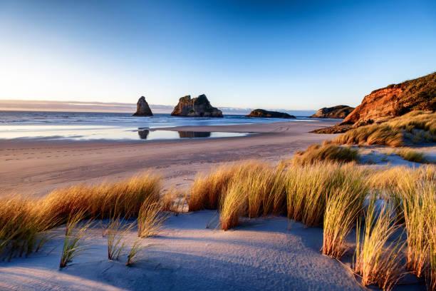 紐西蘭海岸線日落的景觀形象 - 橫向 個照片及圖片檔