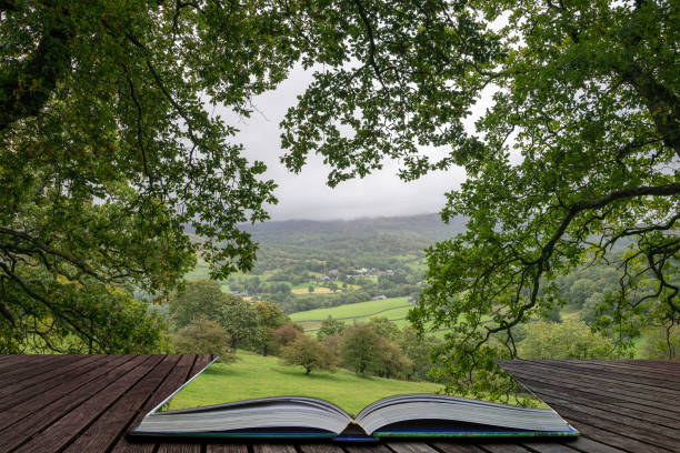 Landscape image of view from Precipice Walk in Snowdonia overlooking Barmouth and Coed-y-Brenin forest coming out of pages in magical story book stock photo