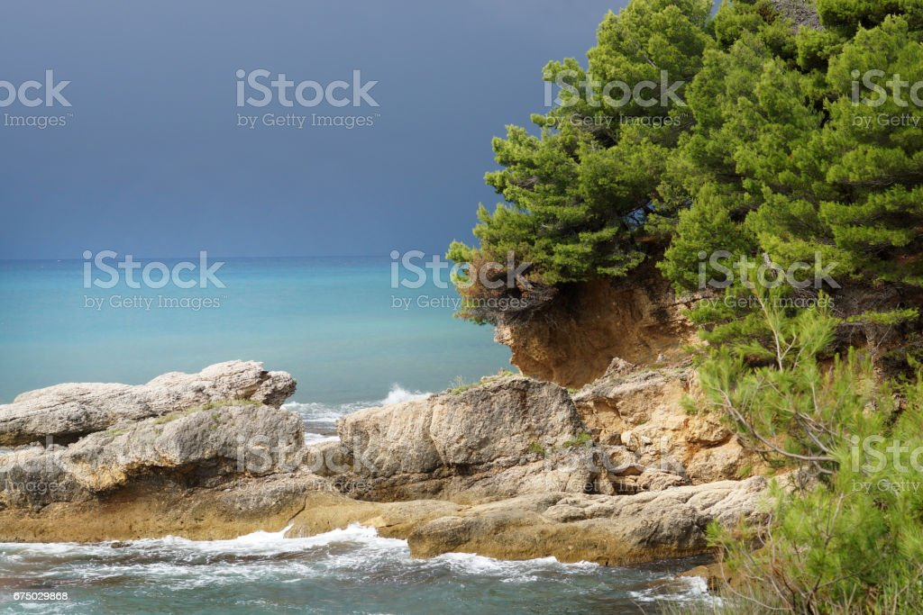 Landscape image, the pine forest by the sea stock photo