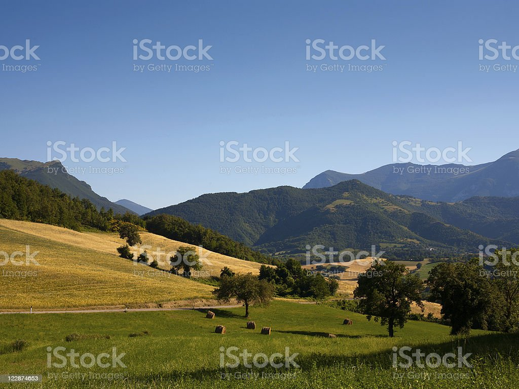 Landscape in a Valley royalty-free stock photo