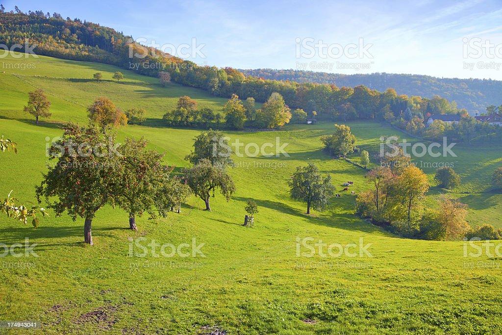 Landscape in Austria stock photo