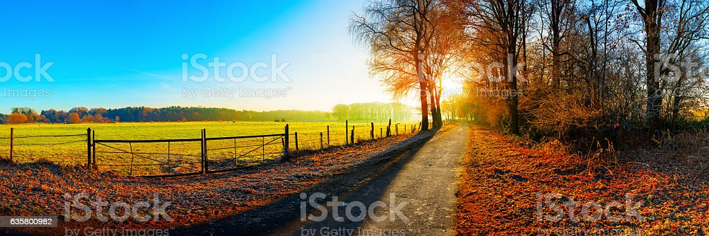 Landscape in autumn stock photo