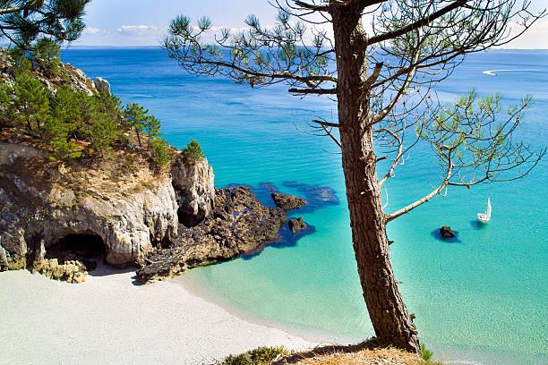 Paysage en Bretagne - Photo