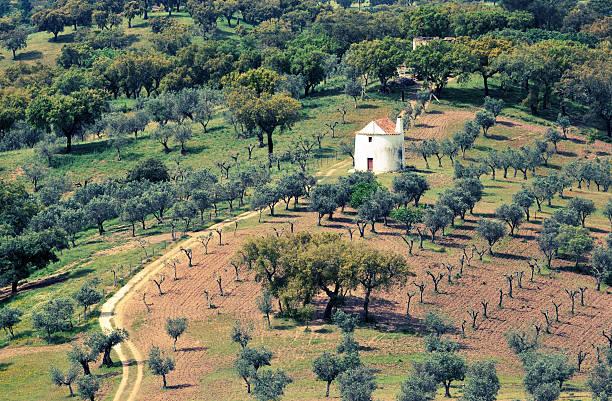 Landscape in Castelo de Vide,Alentejo stock photo