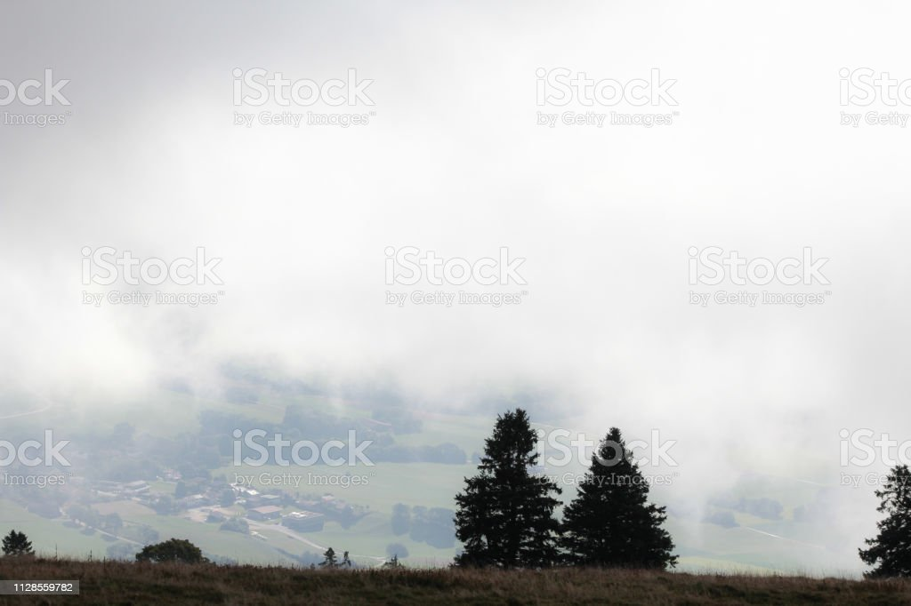 hill slope in fog