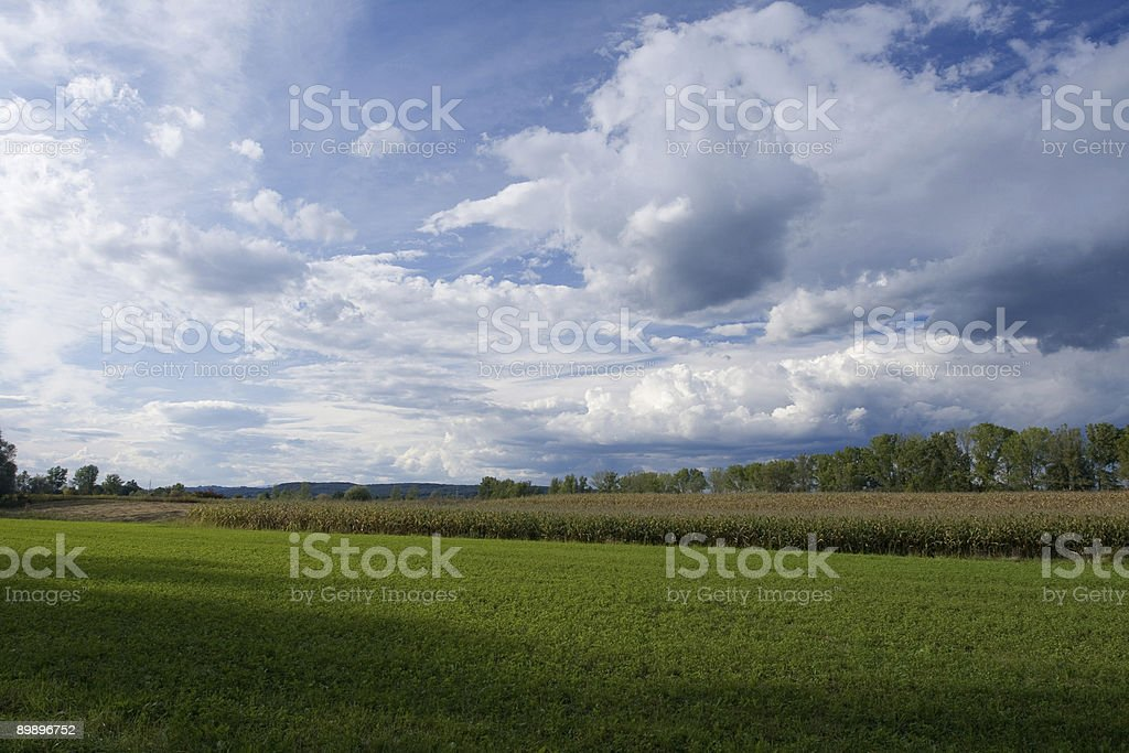 Landscape in early fall royalty-free stock photo