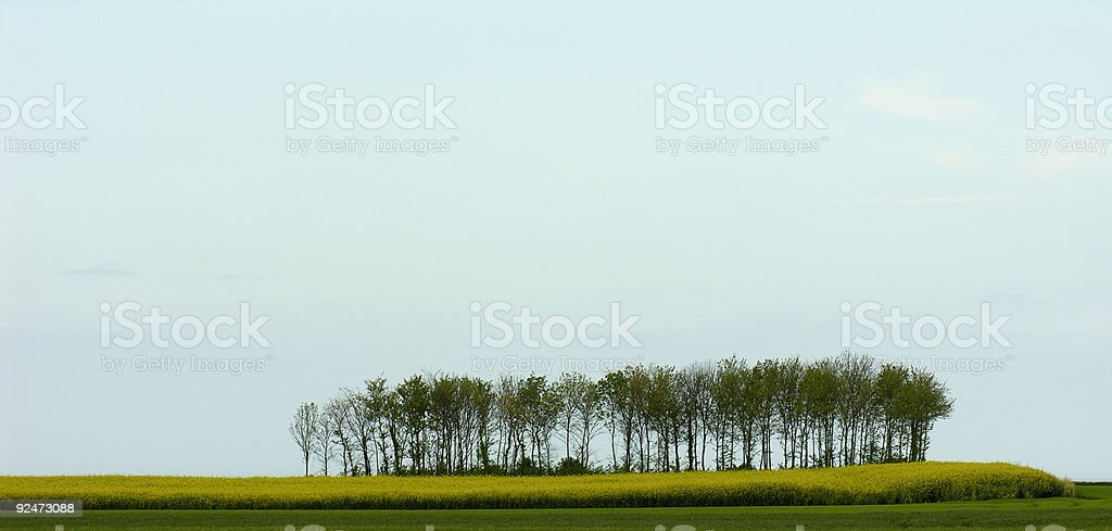 Landscape in France royalty-free stock photo
