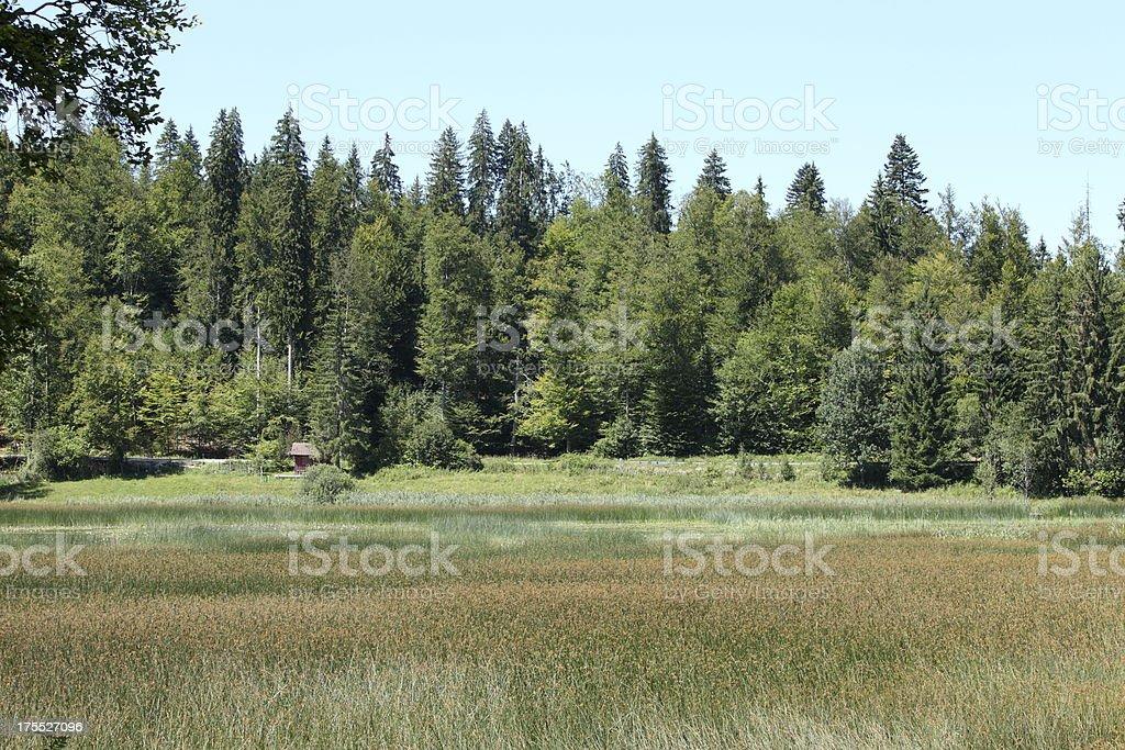 Landscape in Franche Comté, France stock photo