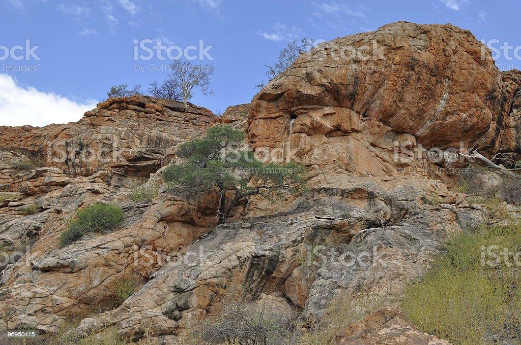 landscape in Mapungubwe national park royalty-free stock photo