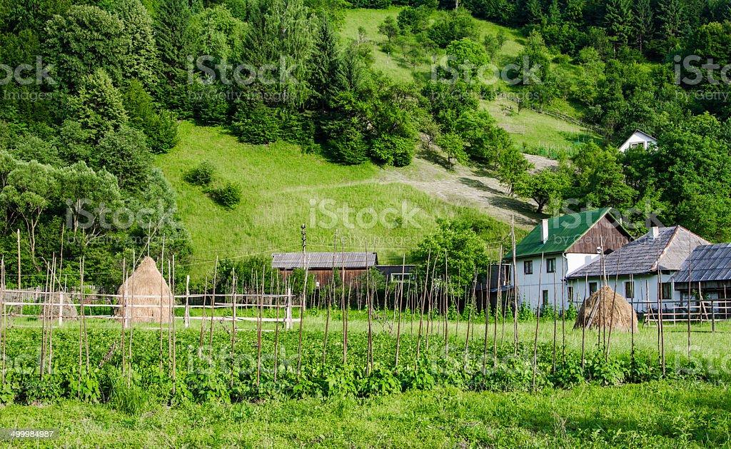 Landscape in Maramures, Romania stock photo