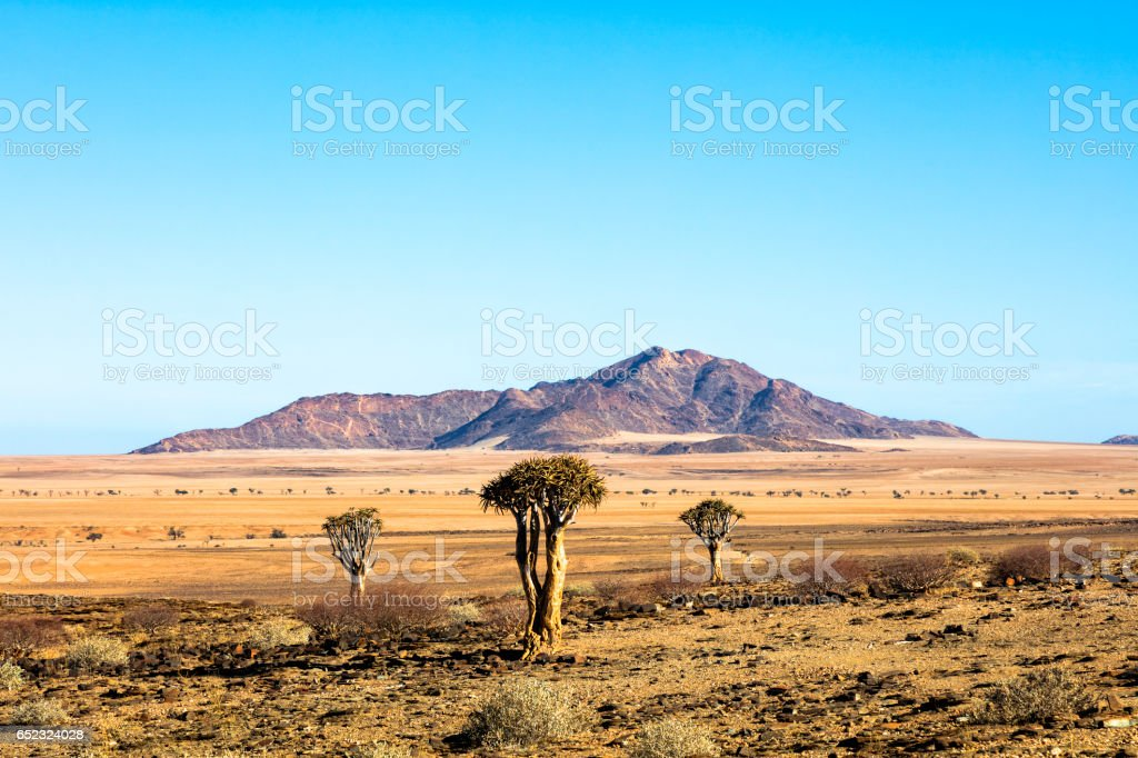 Landscape in Namibia stock photo