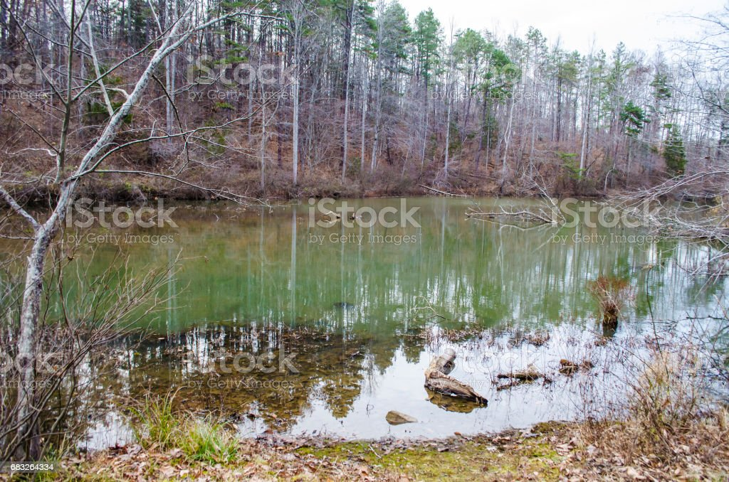 Landscape in rural virginia during summer with green calm peaceful lake in Ivy Creek Park during winter royalty-free stock photo