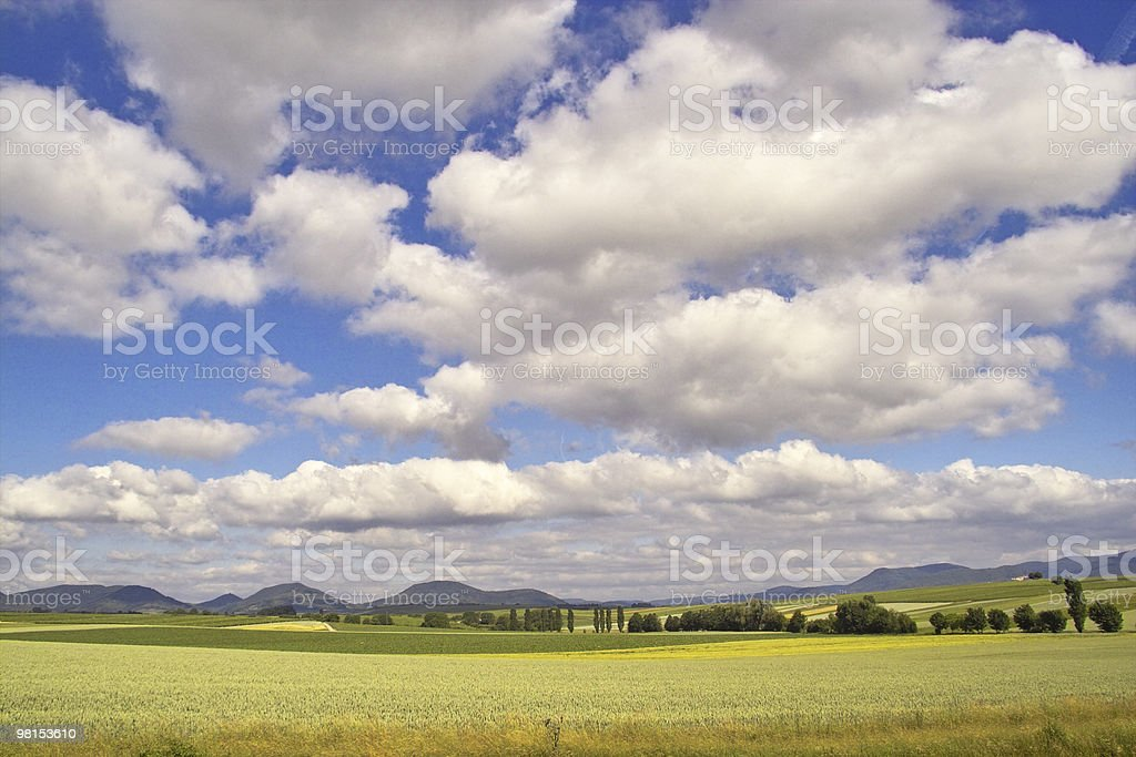 Landscape in Summer royalty-free stock photo