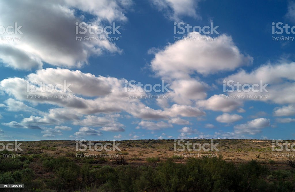 landscape in Texas with sky, clouds and shrubs stock photo