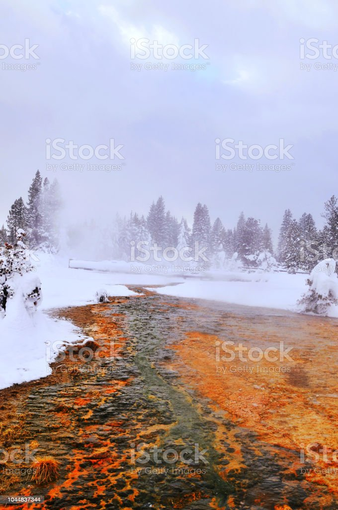 Landscape  in the West Thumb Geyser Basin in Yellowstone stock photo