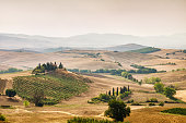 Landscape at Tuscany in a foggy sunrise in Val d'orcia. San Quirico d'Orcia. Italy