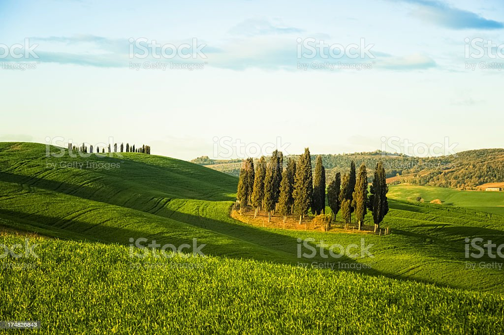 Landscape in Tuscany during spring royalty-free stock photo