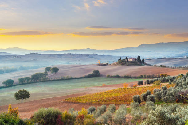Landscape in Tuscany, Italy stock photo