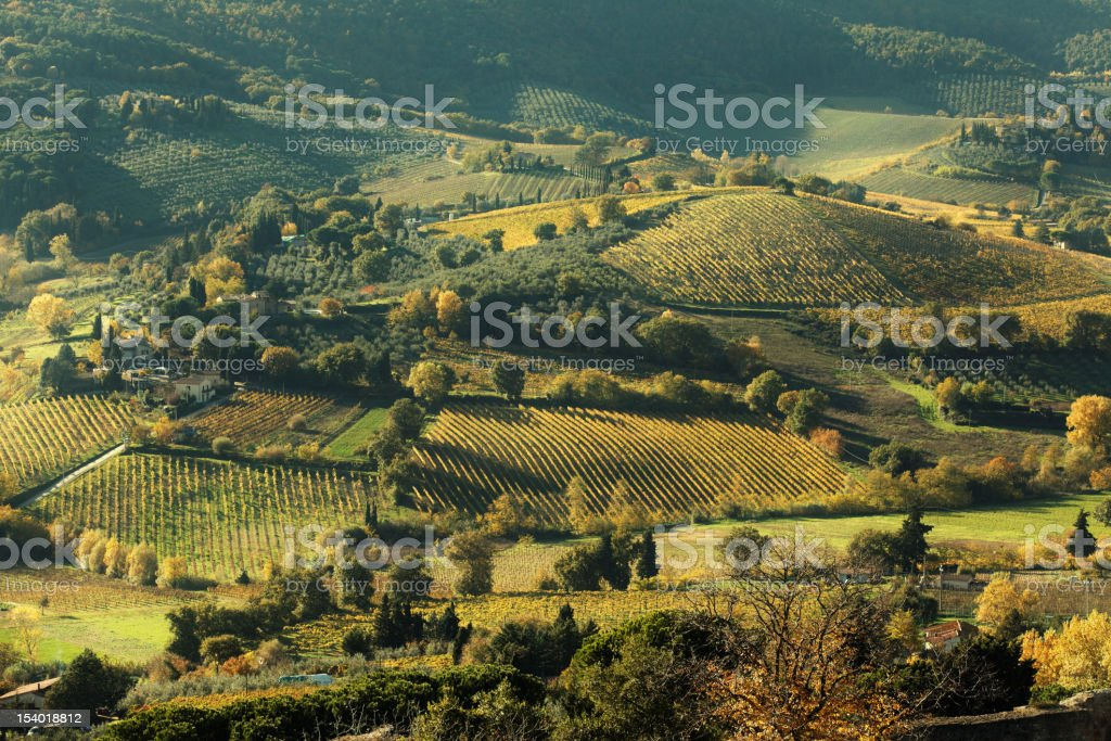 Landscape in Tuscany royalty-free stock photo