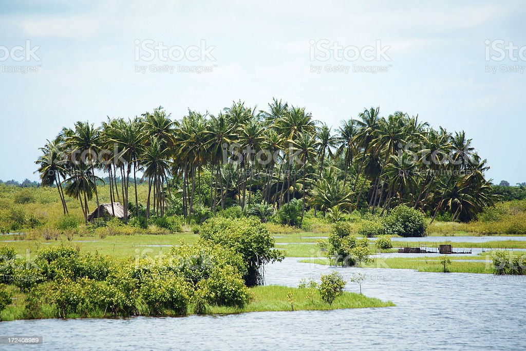 Landscape in West Africa. stock photo