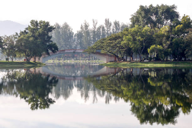 Landscape lake view on morning in Yala city, Thailand Landscape lake view on morning in Yala city, Thailand yala stock pictures, royalty-free photos & images