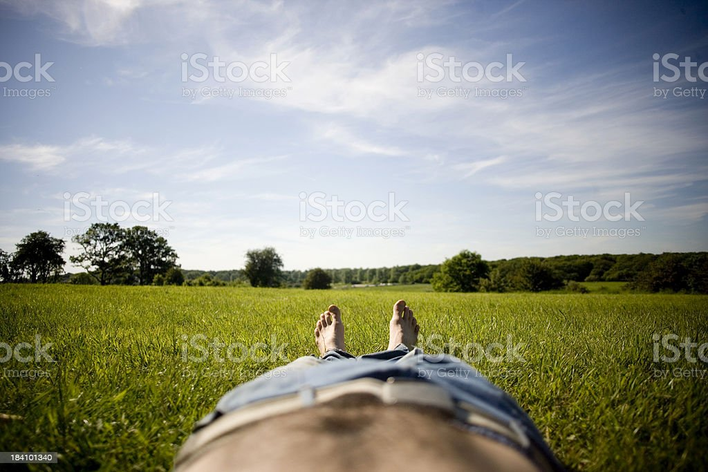 Landscape Legs royalty-free stock photo