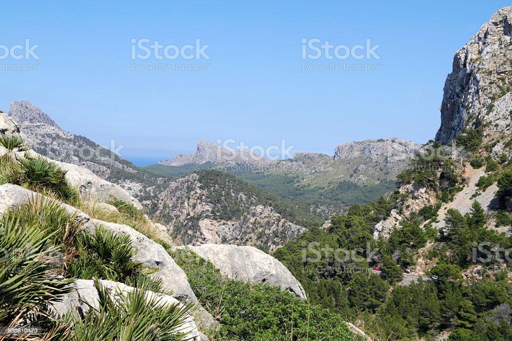 landscape mallorca stock photo