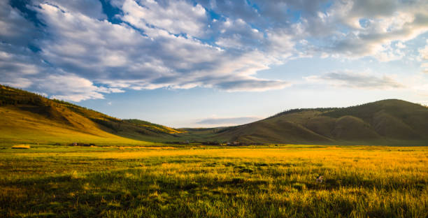 Landscape meadows and pastures of the Baikal National Park. Landscape meadows and pastures of the Baikal National Park. Landscape meadows and pastures of the Baikal National Park. steppe stock pictures, royalty-free photos & images