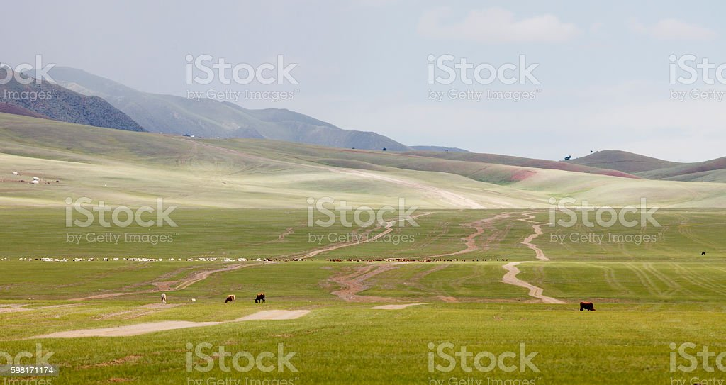 Landscape Mongolia stock photo