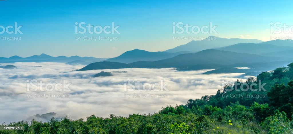 Landscape morning fog covered the valley royalty-free stock photo
