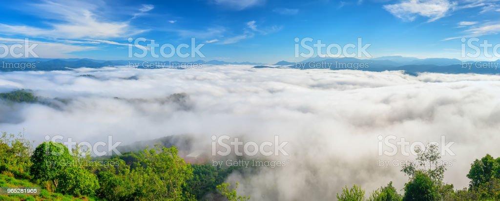 Landscape morning fog covered the valley zbiór zdjęć royalty-free