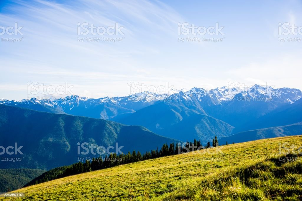 Landschaft Berge bei Hurricane Ridge des Olympic National Park in Washington, USA – Foto