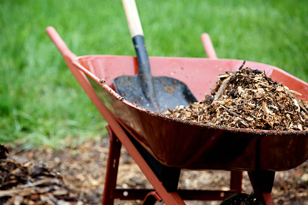 landscape mulch yard work wheel barrow and shovel working with landscape mulch eyecrave stock pictures, royalty-free photos & images